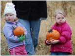 picking pumpkins in Wisconsin